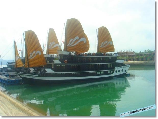 No porto da Paradise Cruise - O Barco