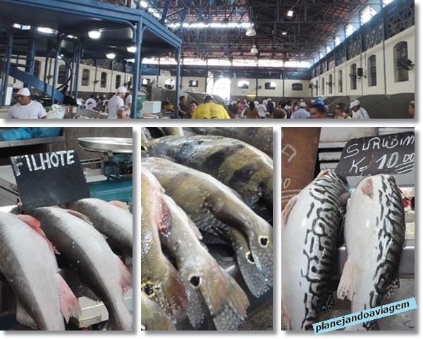 Belem - Mercado Ver o peso - Mercado de Peixes