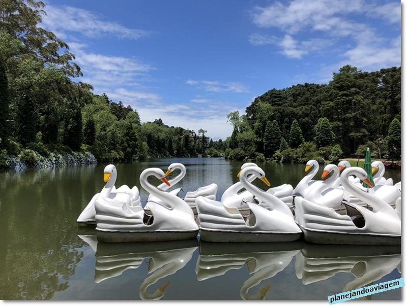 Pedalinhos no Lago Negro